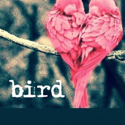 smile_bird